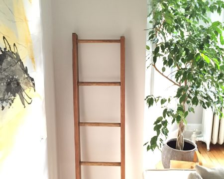 wall ladder home decor