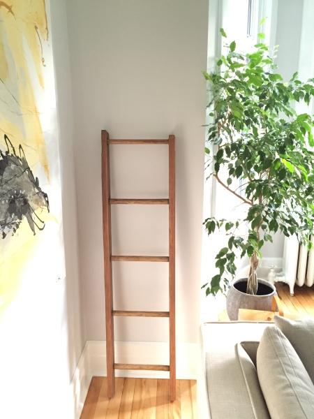 Decorative wall ladder