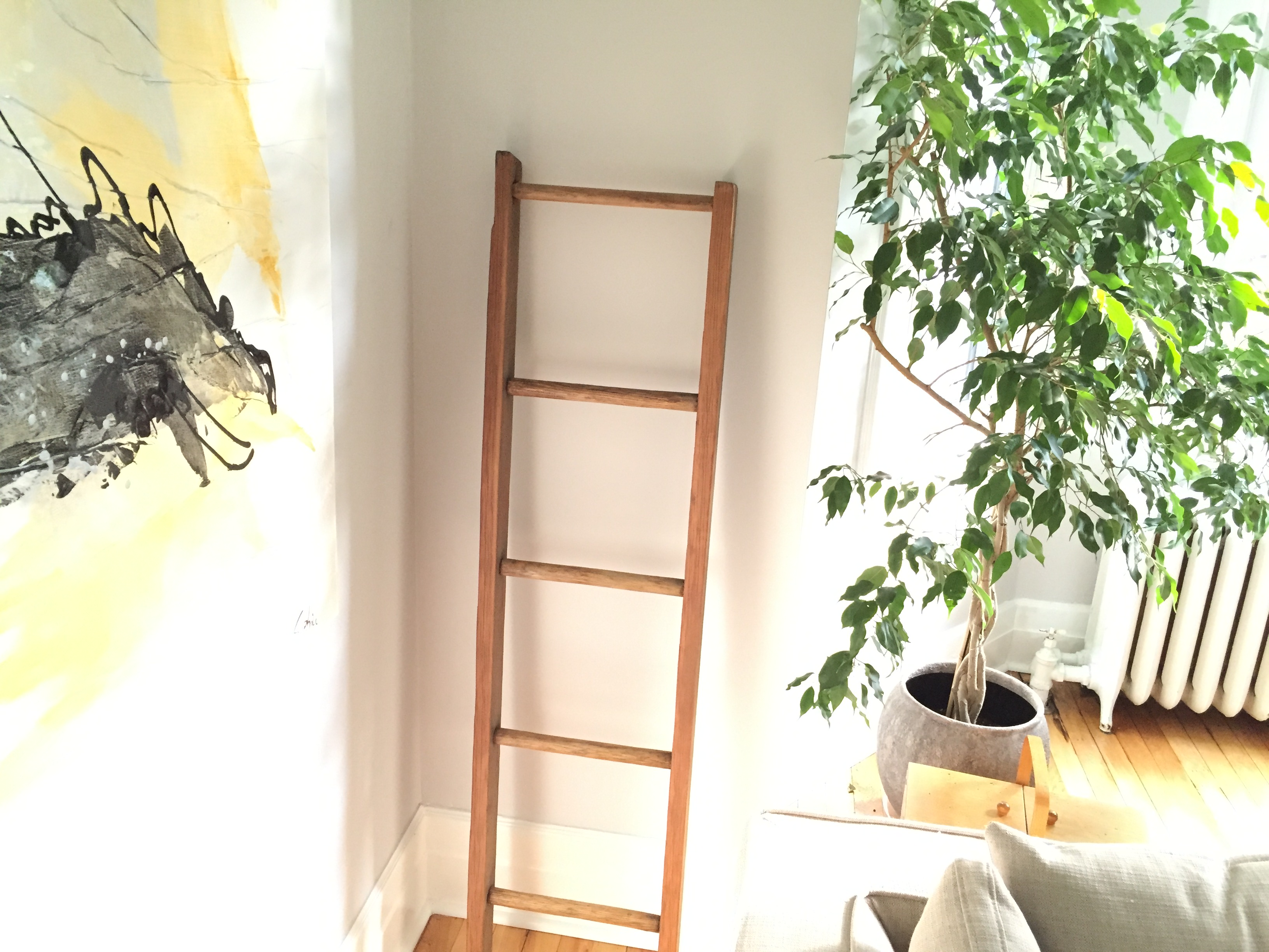 decorative wall ladder